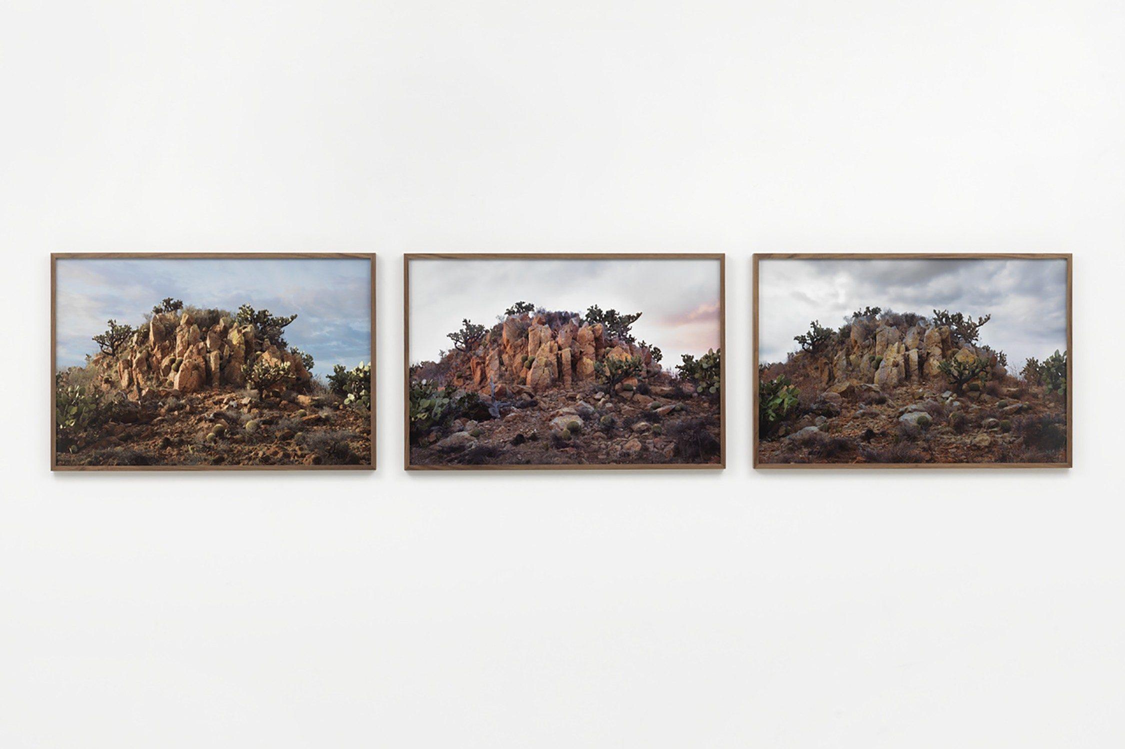 Landscape Painting (Vorher, nachher, ein Jahr später)