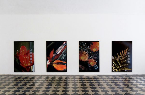 Colin Snapp at Galerie Allen, Paris
