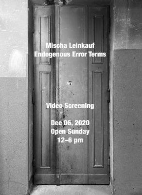 Mischa Leinkauf – Endogenous Error Terms